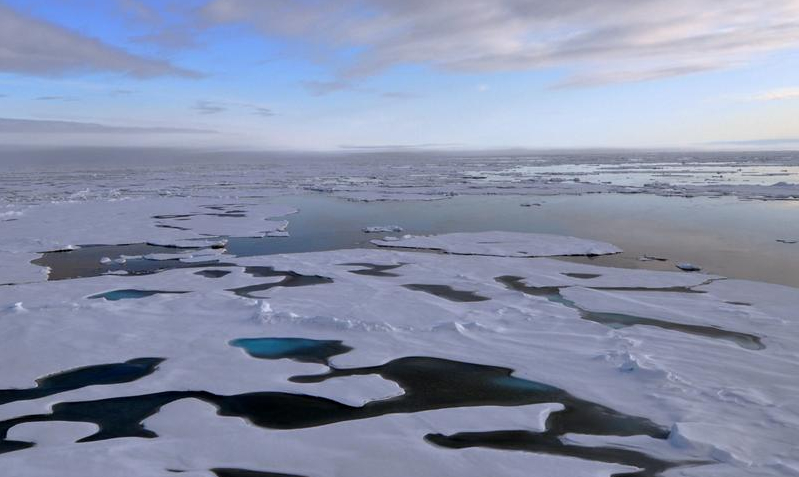 the changes in the arctics ecosystem caused by global warming As climate change alters temperature and weather patterns, it will also  the loss  of biodiversity could have many negative impacts on the future of ecosystems  and  the habitats of polar bears, penguins, puffins, and other arctic creatures   rising sea levels will also cause changes to ocean temperatures.