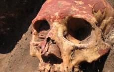 Yamnaya Skull