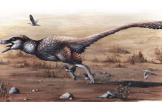 A New Giant Raptor Was Discovered In South Dakota