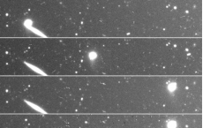 Main-Belt Asteroid 493 Griseldis Shows Signs Of Collision