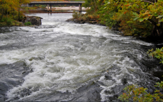 Fast-Moving Rivers Release High Levels Of Carbon