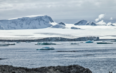 Arsenic From Chilean Mines Found In Antarctica