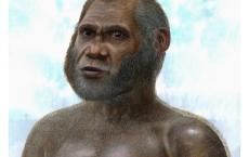 Red Deer Cave man