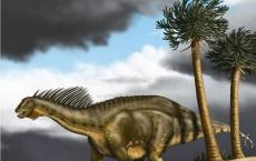 Sauropod dinosaur Euhelopus zdanskyi