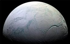 Close Enceladus Flyby