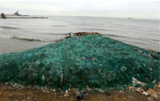 Plastic waste in world's oceans threatens marine life