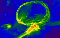 Simulation of first stars in the universe, depicting how the gas cloud with heavy elements