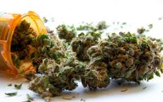 Could Marijuana Smokers Start Using Alcohol