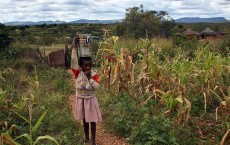 Food Shortages Cause Desperation Across Zimbabwe