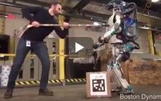 This Is A Real Robot,Not A Man In A Robot Suit.