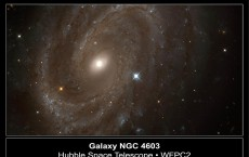 Hubble Finds Variable Stars In Distant Spiral Galaxy A NASA Hubble Space Telescope