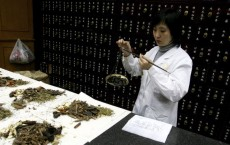 Local Patients Are Received Chinese Traditional Medicines In Beijing