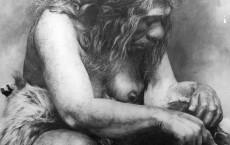 Neanderthal Ancestors