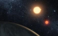 Newborn Planets