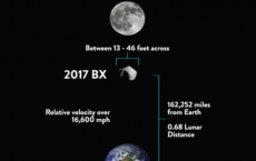 2017 BX