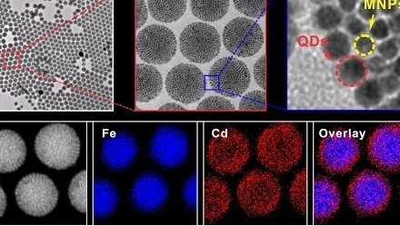 Looking Inside Nanoparticles