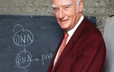 Francis Crick, Nobel Prize winner for figuring out the double-helix structure of DNA.