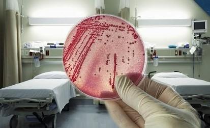 Hospital Bacteria Outbreaks