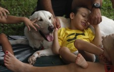 Animals Help Autistic Kids Interact Better: Study