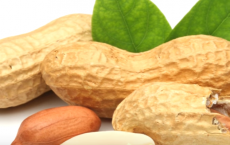 5 Best Health Benefits of Peanuts