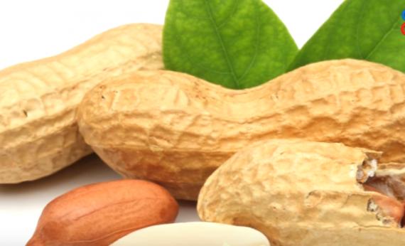 5 Best Health Benefits of Peanuts