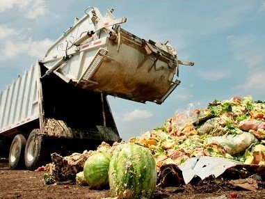 Shocking Food Wastage Facts Revealed By EPA