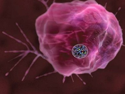 Cancer Diagnosis And Treatment With A Single Nanoparticle