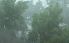 Heavy Rain And Wind