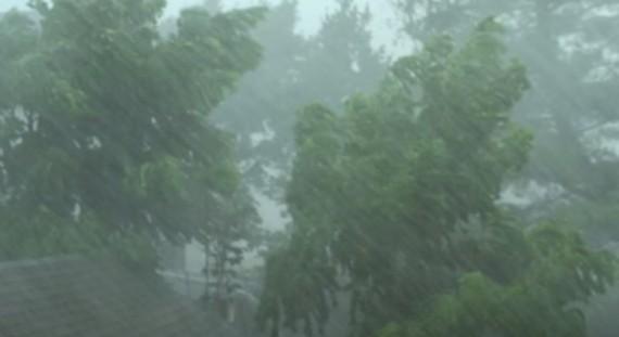 Heavy Rain And Wind