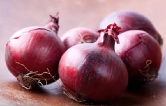 Eating Red Onions Help Fight Cancer