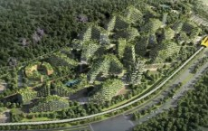 China's First 'Forest City'